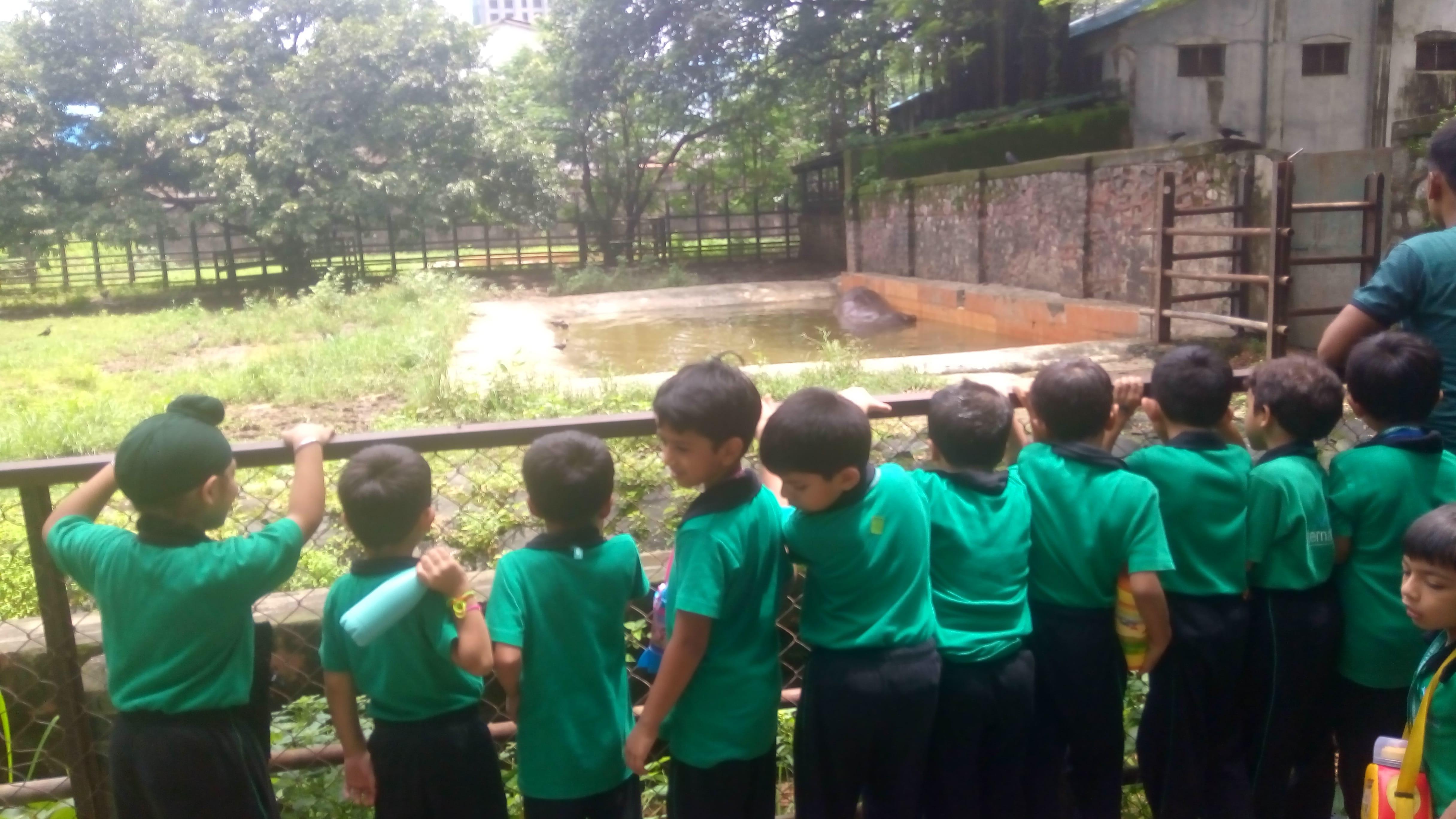 Grade 1 Field trip to zoo